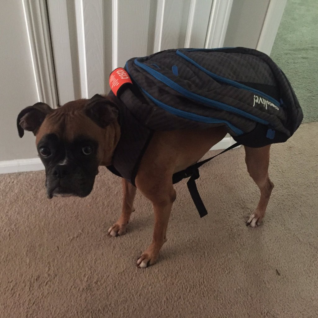 Aurora in a CLUS Backpack